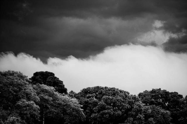 Os temporais causaram estragos em toda a cidade. (Foto: Brunno Covello/SMCS)
